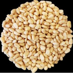 Pijnboompitten 50 x 30 gram
